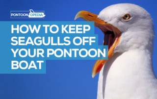 How to Keep Seagulls Off Your Pontoon Boat Bimini, Cover and Boat Lift