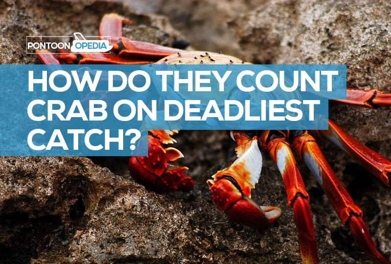 how do they count crab on deadliest catch