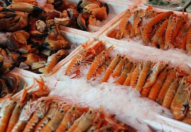 shrimp boat trawler prices